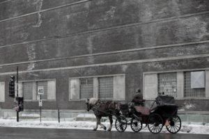 A horse drawn carriage.
